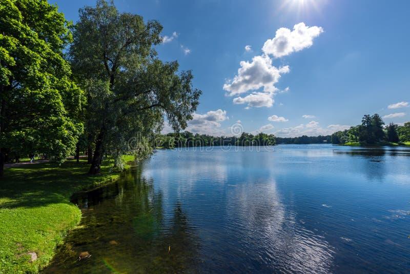 Jezioro w naturalnym parku z drzewami r na bankach obrazy royalty free