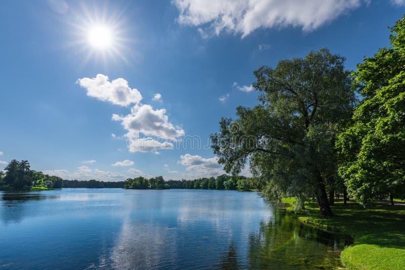 Jezioro w naturalnym parku z drzewami r na bankach zdjęcie royalty free