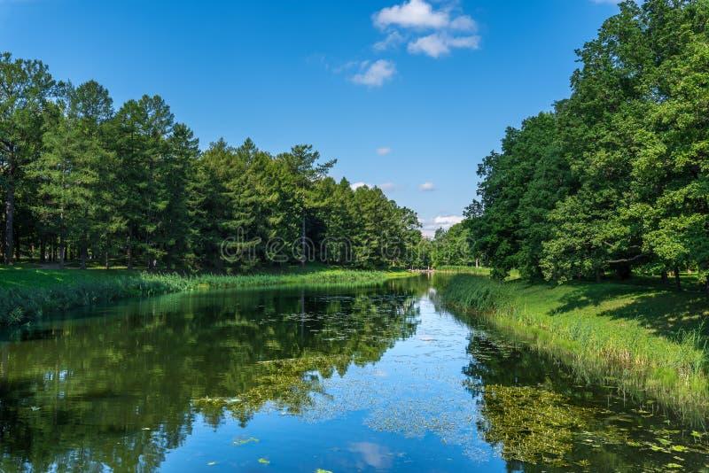 Jezioro w naturalnym parku z drzewami r na bankach fotografia royalty free
