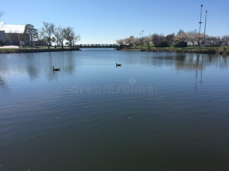Jezioro w północna strona parku fotografia royalty free