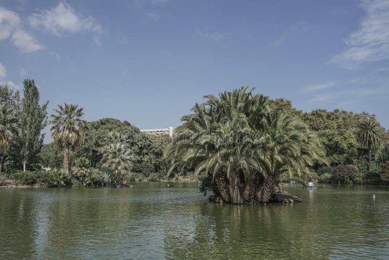 Jezioro w Parkowym De Los angeles Ciutadella w Barcelona, Hiszpania fotografia royalty free