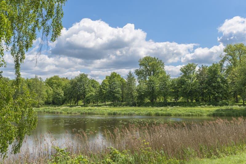 Jezioro w parku zdjęcie royalty free