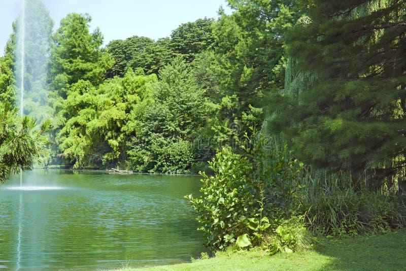 Jezioro w parku obraz royalty free