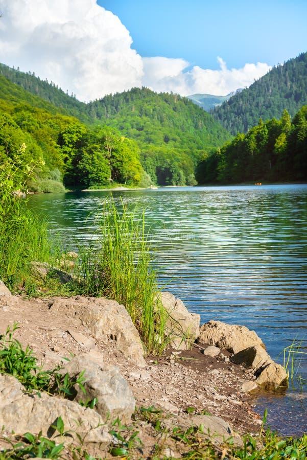 Jezioro w parku Czarnogóry zdjęcie royalty free
