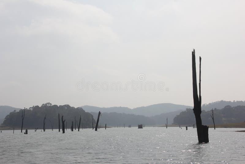 Jezioro w Periyar parku narodowym, India zdjęcia stock