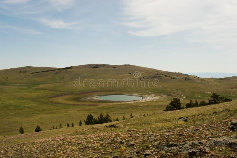 Jezioro jezioro w polu z kwiatami na brzeg jeziora na jasnym dniu fotografia stock