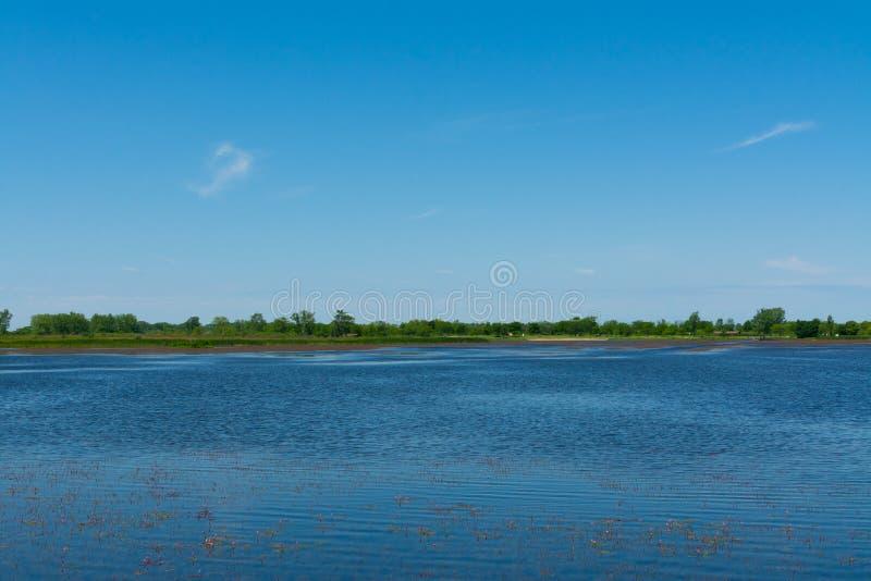 Jezioro w Richard Bong stanu Rekreacyjnego teren fotografia stock