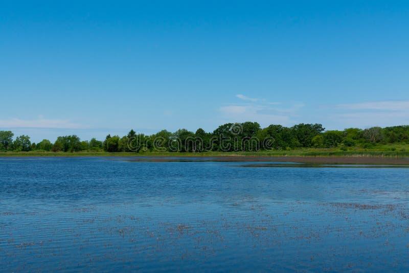 Jezioro w Richard Bong stanu Rekreacyjnego teren zdjęcia stock