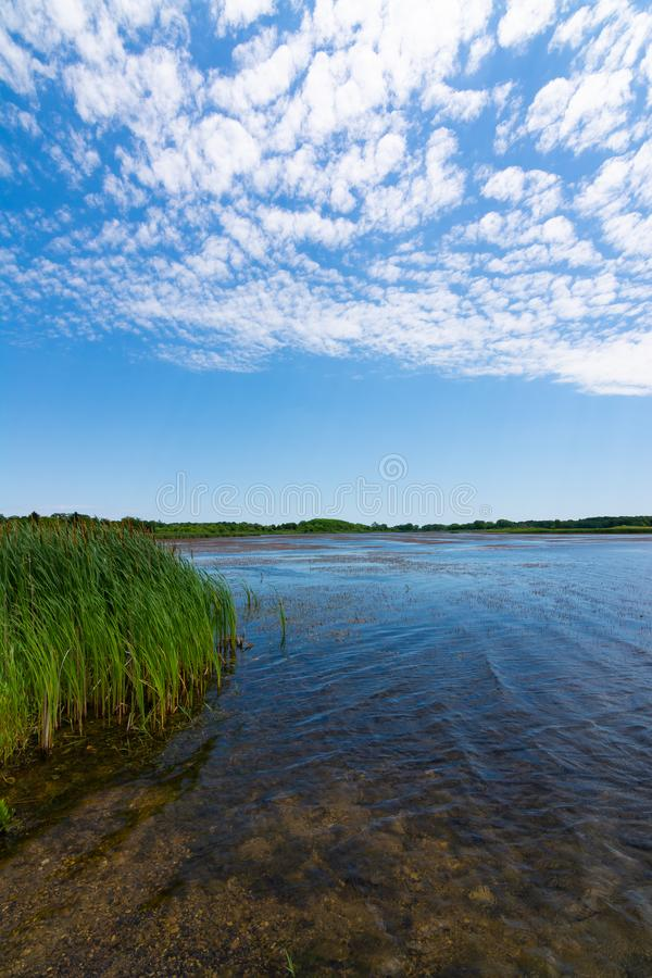 Jezioro w Richard Bong stanu Rekreacyjnego teren obrazy royalty free