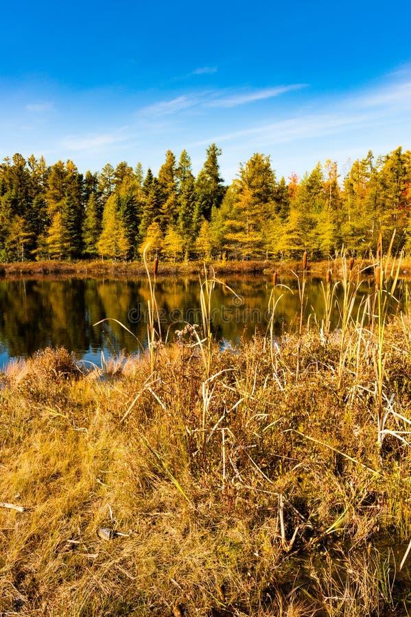 Jezioro w spadek obraz stock