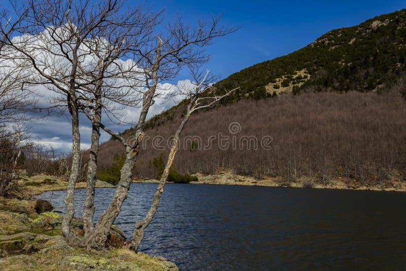 Jezioro w sw?j pi?knych kolorach zdjęcia stock