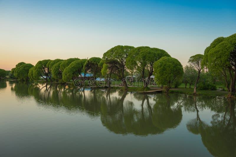 Jezioro z drzewami w wieczór zmierzchu fotografia royalty free