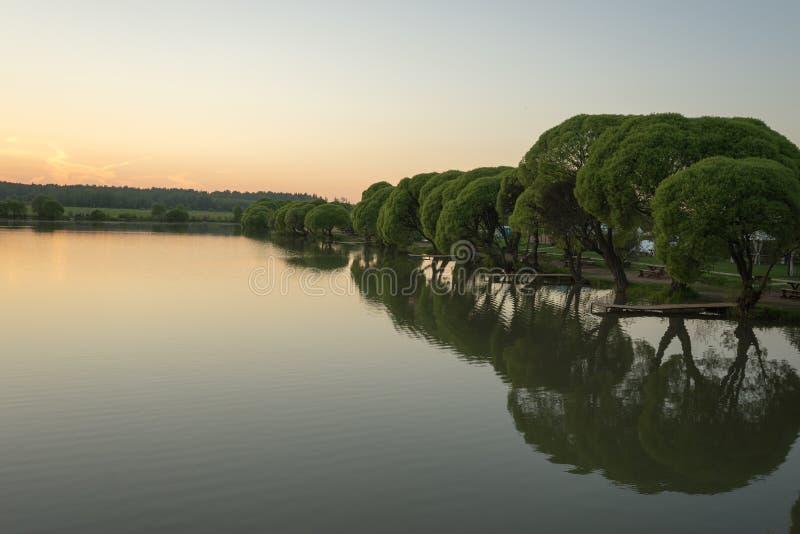 Jezioro z drzewami w wieczór zmierzchu zdjęcie stock