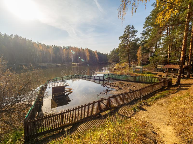 Jezioro z piórem dla kaczek, otaczającym jesień lasem obraz stock