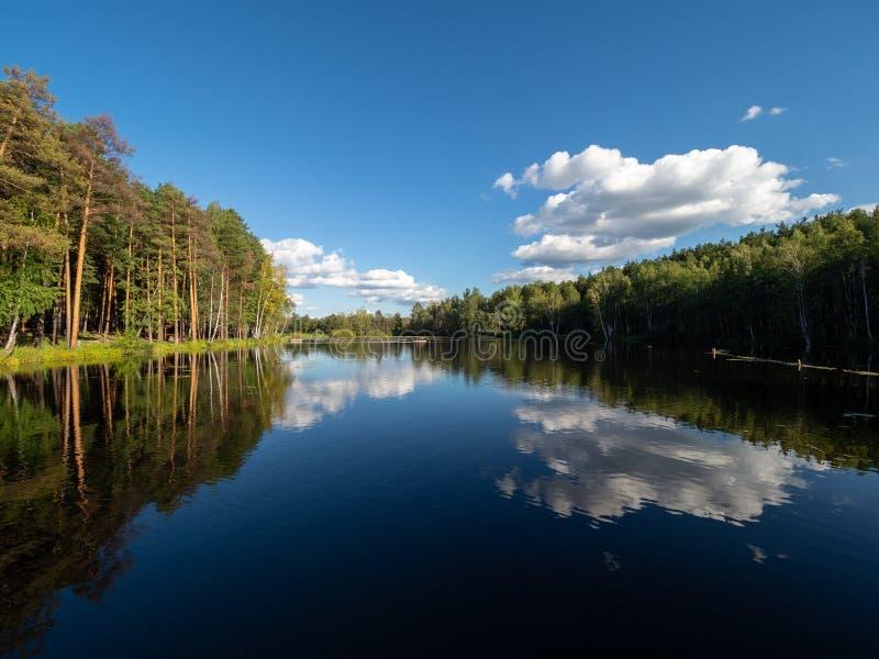 Jezioro z sosny i brzozy lasem na brzeg obrazy stock