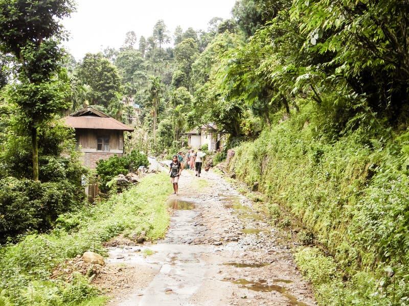 Jhalong Obozowy teren, Suntalekhola Samsing, Kalimpong, Zachodni Bengalia, India Lokalizował blisko Neora Dolinnego parka narodow obraz royalty free