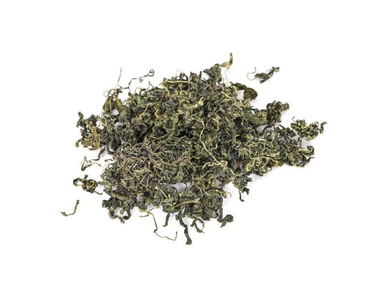 Jiaogulan, Miracle grass, Chinese herb tea.  stock photos