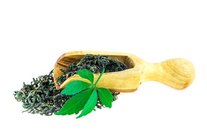 Jiaogulan Miracle Grass Leaf Chinese Herb Tea in Wooden Spoon On White. Background royalty free stock photos