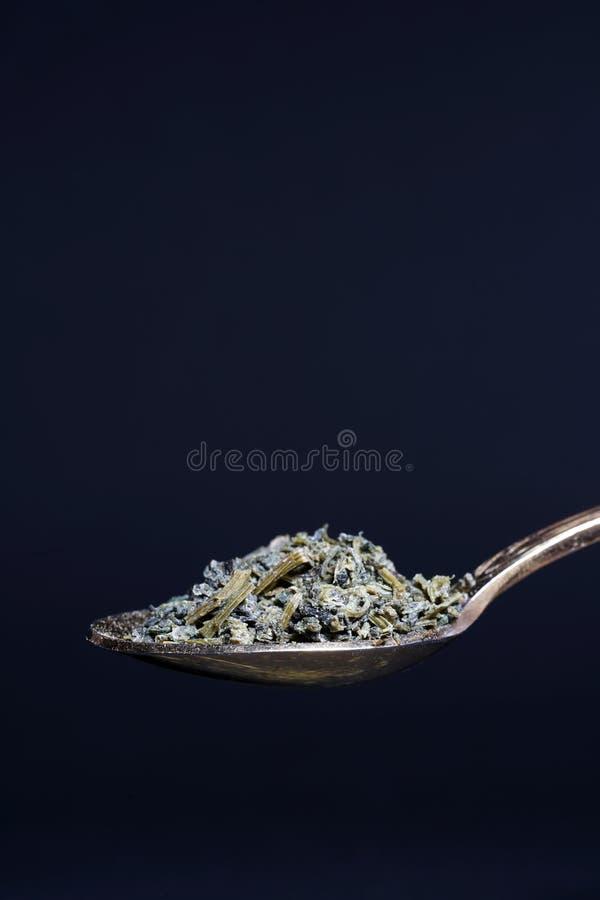 Jiaogulan ziele także często odnosić sie jako ziele nieśmiertelność fotografia royalty free