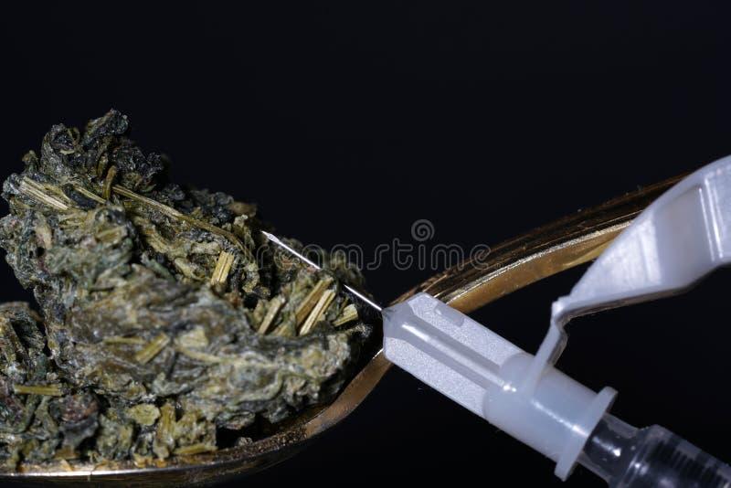 Jiaogulan ziele także często odnosić sie jako ziele nieśmiertelność obrazy stock