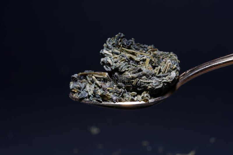 Jiaogulan ziele także często odnosić sie jako ziele nieśmiertelność zdjęcie royalty free