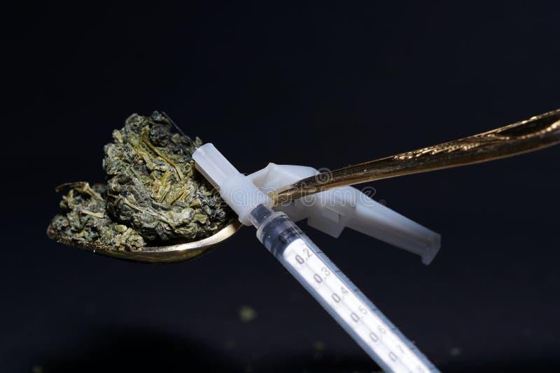 Jiaogulan ziele także często odnosić sie jako ziele nieśmiertelność obraz stock