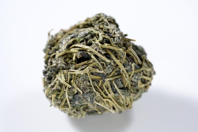Jiaogulan ziele także często odnosić sie jako ziele nieśmiertelność fotografia stock