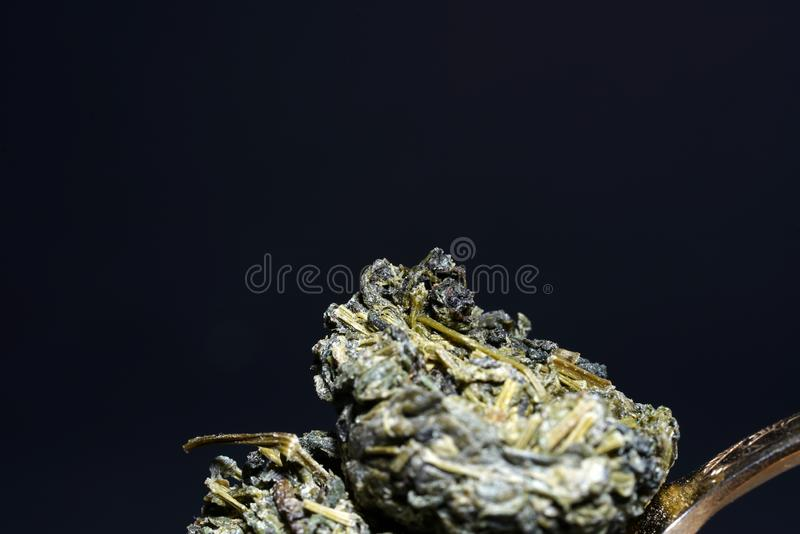 Jiaogulan ziele także często odnosić sie jako ziele nieśmiertelność zdjęcie stock