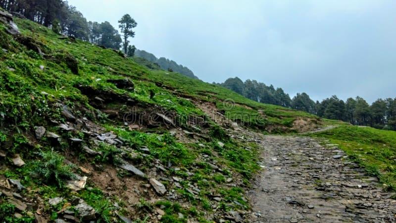 Jibhi谷喜马偕尔邦印度 免版税库存照片