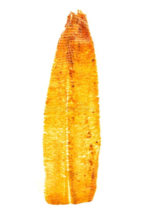Jibias secadas aisladas en el fondo blanco fotografía de archivo
