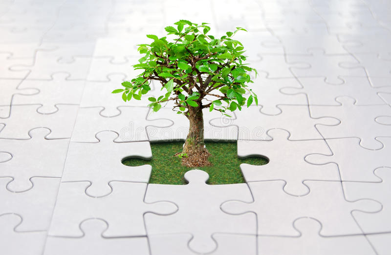 Jigsaw puzzle tree. Small tree growing from grass inside a jigsaw royalty free stock images
