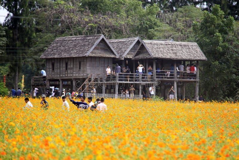 Jim Thompson Farm, Thailand stock foto
