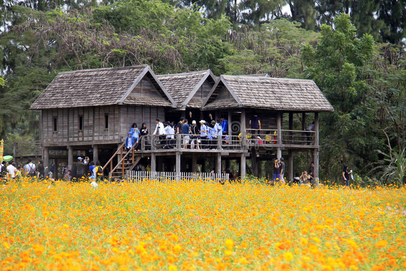 Jim Thompson gospodarstwo rolne, Tajlandia obrazy stock