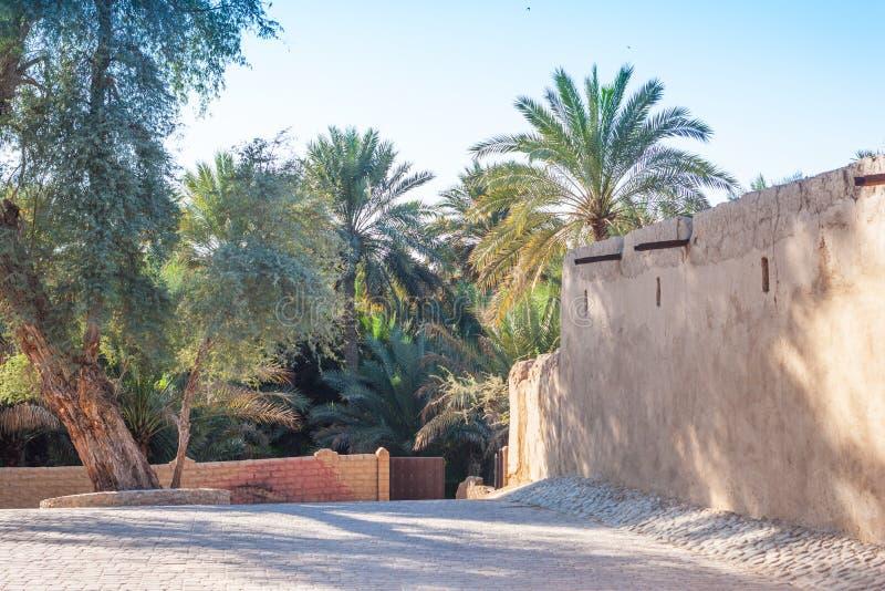 Jimi Oasis en Al Ain en los UAE fotos de archivo