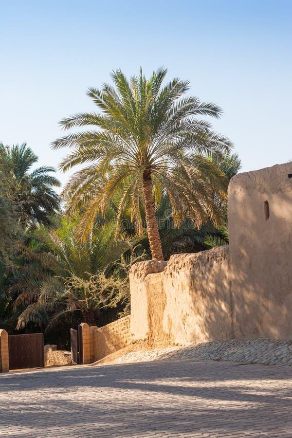 Jimi Oasis en Al Ain en los UAE fotos de archivo libres de regalías