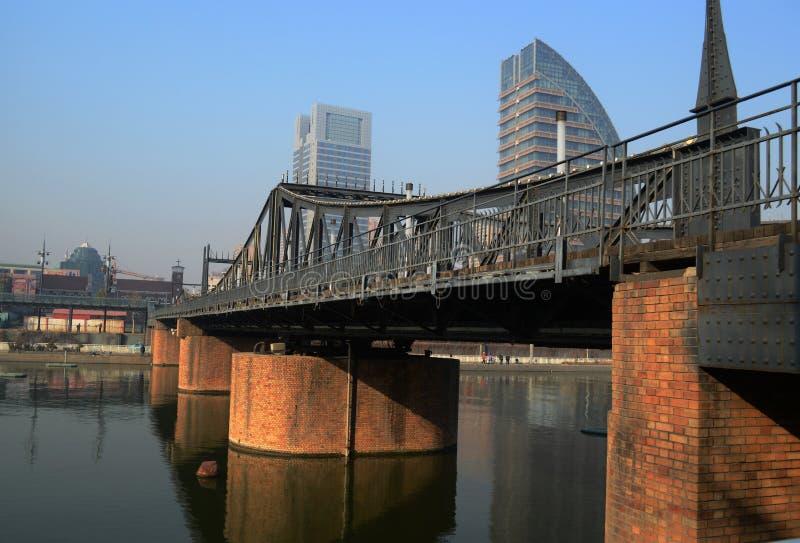 Jin blaszecznicy most obrazy stock