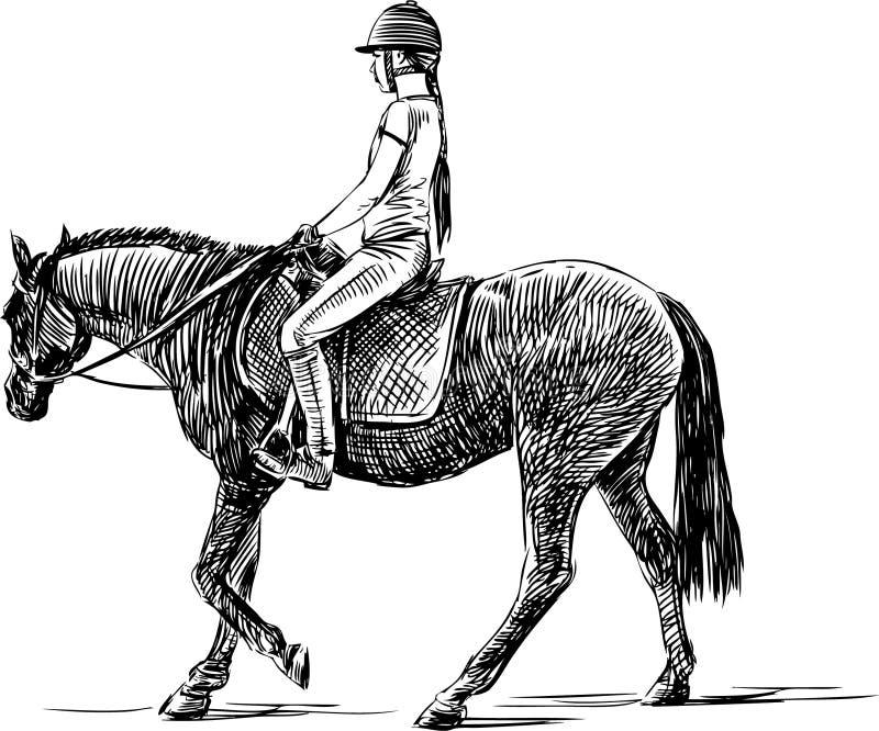 Jinete libre illustration