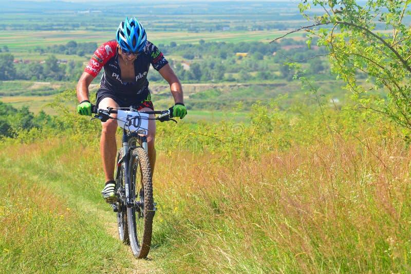 Jinete de la bici de montaña imagenes de archivo