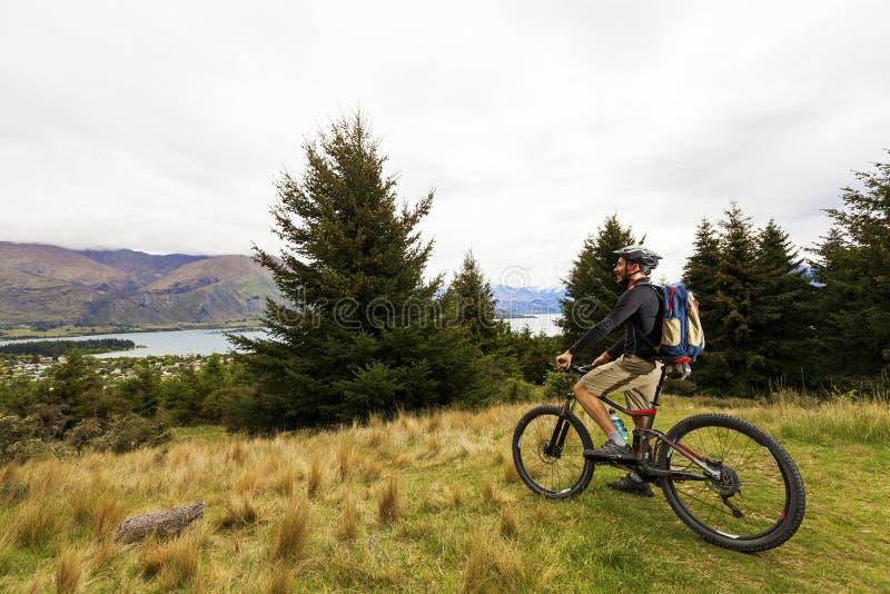 Jinete de la bici de montaña en el lago Wanaka fotografía de archivo