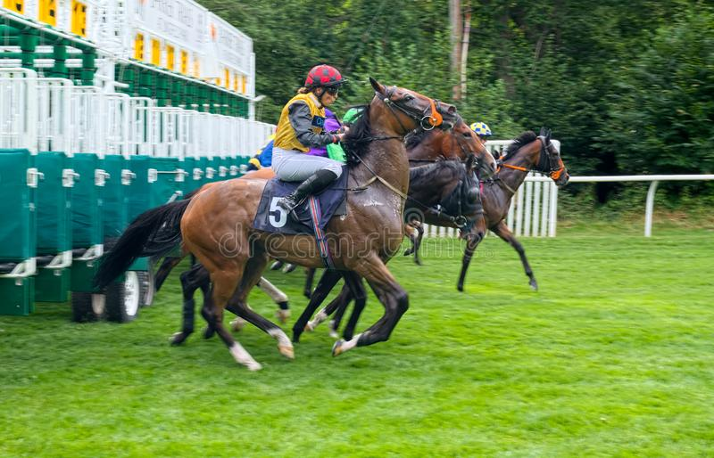 Jinete de la carrera de caballos de Jessica Cooley Apprentice fuera de las paradas foto de archivo libre de regalías