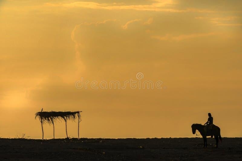 Jinete de Palapa de la puesta del sol y caballo del jinete y de Palapa del la de Atardecer del caballo fotos de archivo