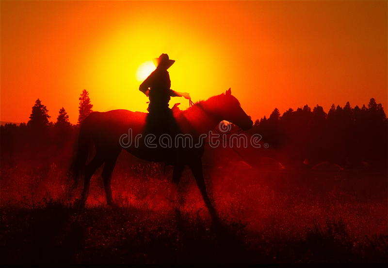 Jinete del caballo de la puesta del sol fotografía de archivo libre de regalías