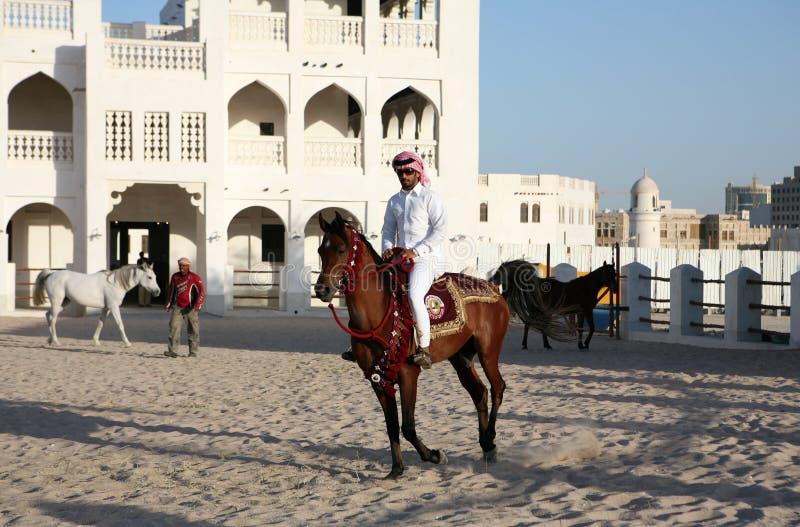 Jinete del caballo en Doha, Qatar