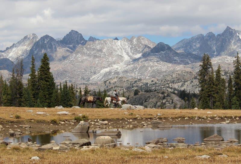 Jinete del caballo en gama del ` s Wind River de Wyoming imagen de archivo