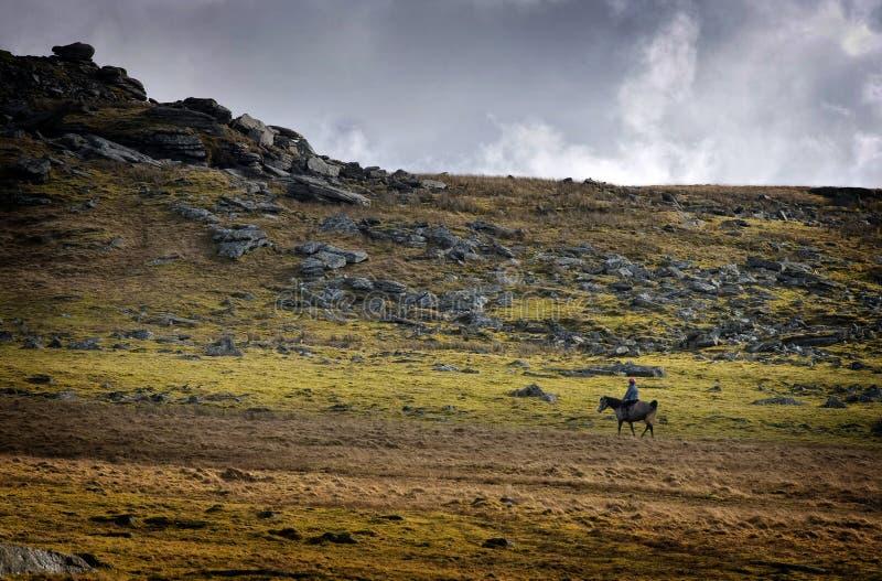 Jinete del caballo en los llanos abiertos rugosos imagen de archivo libre de regalías
