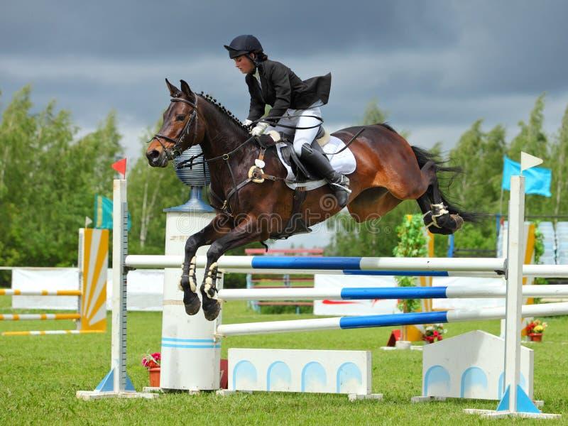 Jinete en caballo de bahía en los deportes que saltan la demostración fotografía de archivo libre de regalías