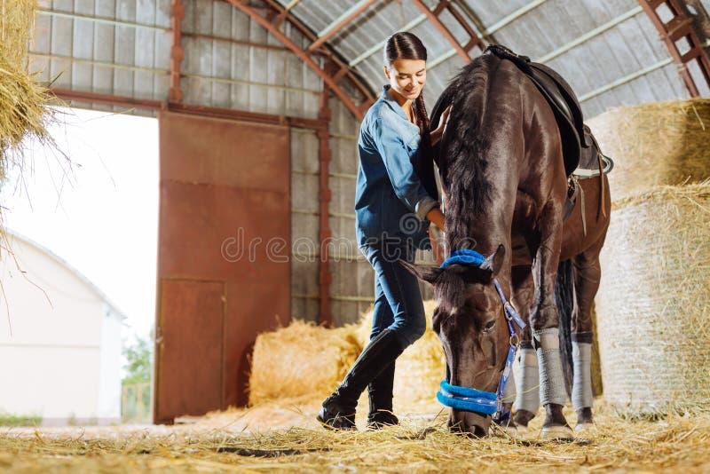 Jinete femenino profesional que se siente bien mientras que visita el caballo en establo fotografía de archivo