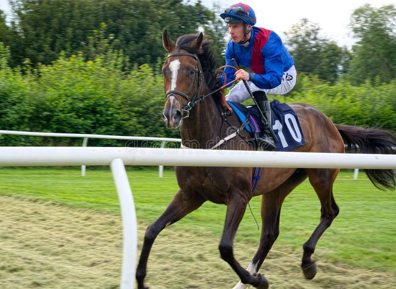 Jinete Richard Kingscote de la carrera de caballos que monta Ardimento fotos de archivo