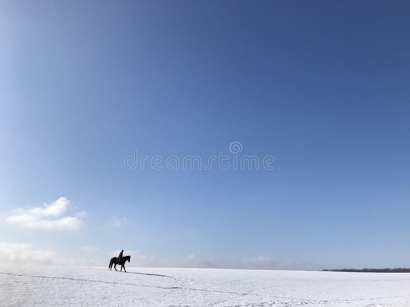 Jinete solitario en un caballo negro imágenes de archivo libres de regalías
