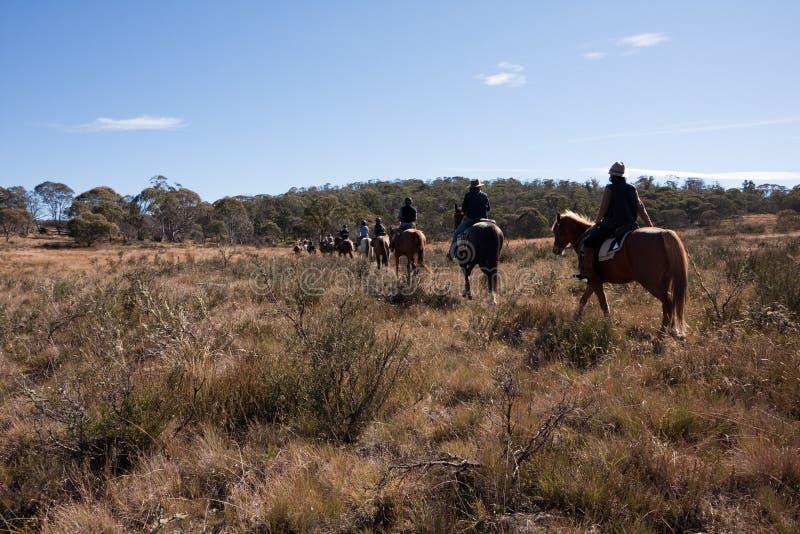 Jinetes del caballo del turismo ecológico en arbusto australiano fotos de archivo libres de regalías
